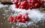 Калина при сахарном диабете 2 типа
