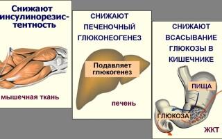 Глюкофаж Лонг для похудения — отзывы и цена. Инструкция по применению препарата Глюкофаж Лонг